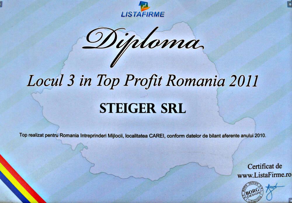 2. 2011 - Top Profit Romania - Locul 3 Steiger SRL